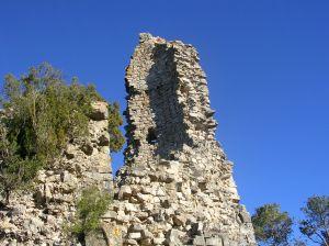 Torre de l'homenatge 2009 (II)